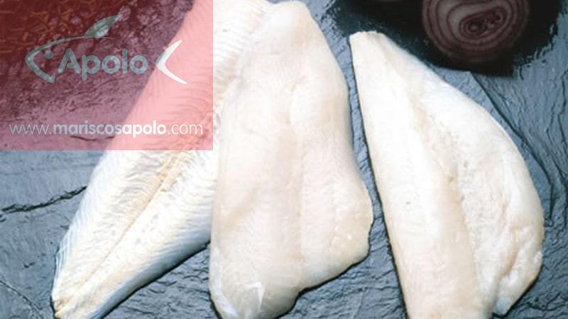 Filetes de merluza congelada