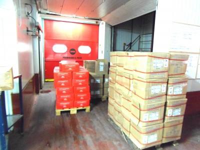 Organización en Almacén frigorífico Congelados Apolo