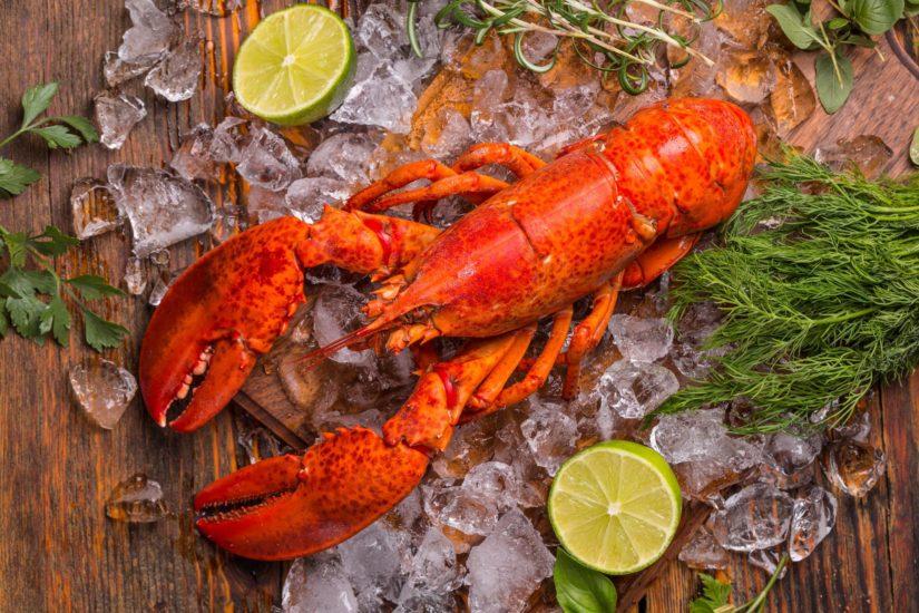 Pescados y mariscos de la A a la Z: La langosta