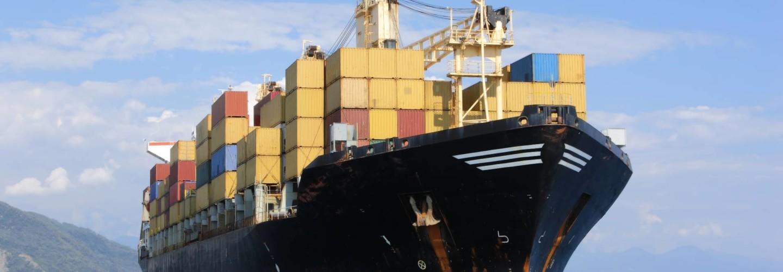 Importación de Marisco y Pescado a España Mariscos Apolo
