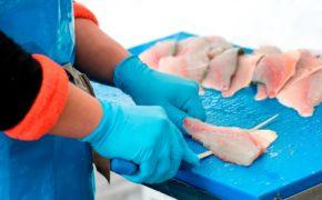 La solución contra el anisakis - Pescado y Marisco Congelado