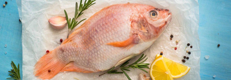 Pescados y mariscos de la A a la Z: La Tilapia - Pescados y salud