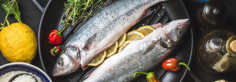 Factores Que Influyen En La Calidad Del Pescado Congelado
